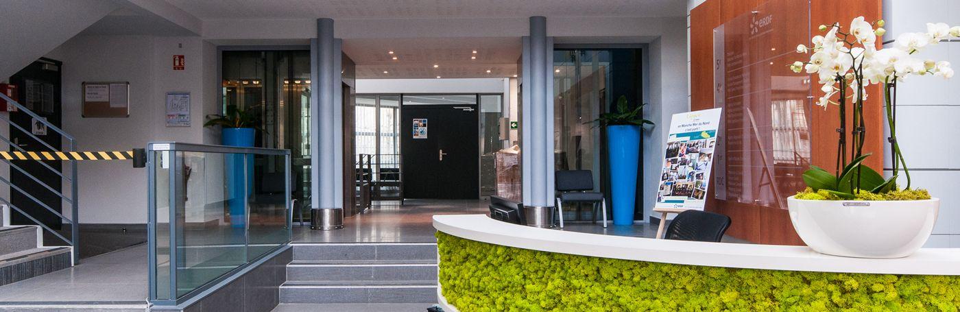 Location et décoration végétale pour entreprises sur Lille et sa métropole
