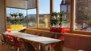 Location de jardinières basses avec plantes pour votre salle de détente ou salle de réunion