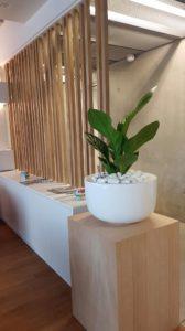Location de vasque sur colonne bois pour décorer vos bureaux et espaces de travail