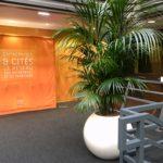 Louer vos plantes pour votre établissement professionnel sur Lille Paris