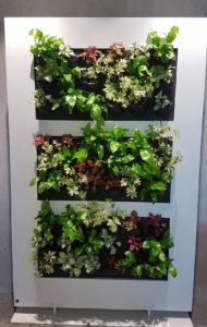 Mur végétal pour VINCI