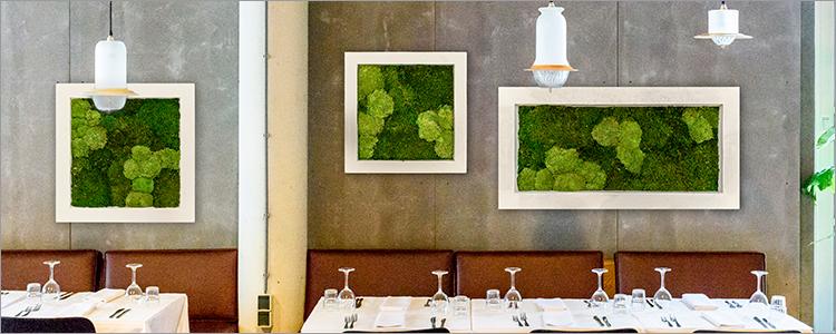 Tableaux de mousse végétale pour vos établissements et évènements
