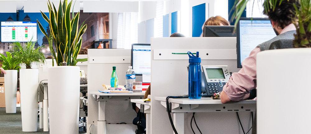 Location de plantes dans vos espaces de travail - Booking