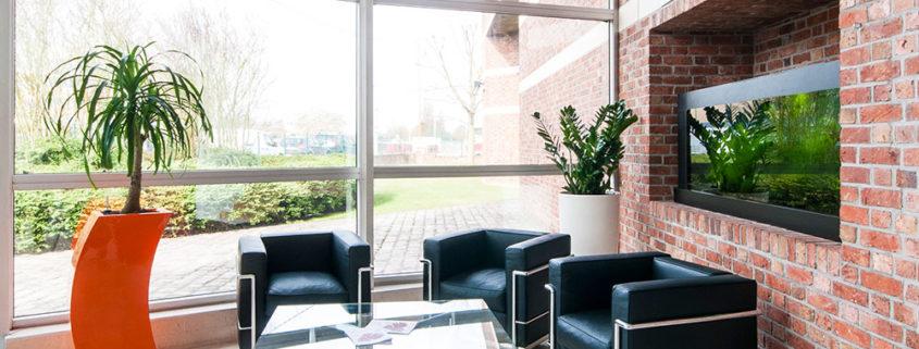 Aménagement mobilier décoration et plantes - Salon d'accueil - Diagast Loos