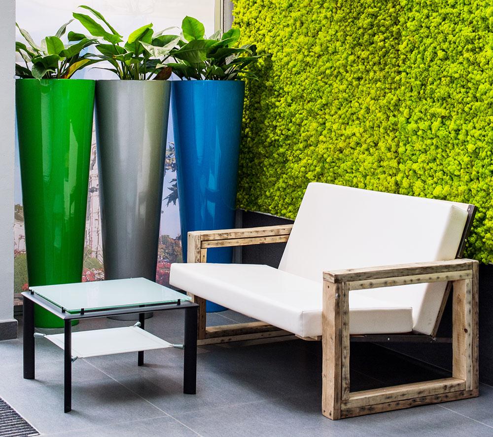 Mur végétal de mousse naturelle et plantes - Salle d'attente - ENEDI