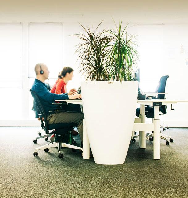 Plantes et pots en location pour votre entreprise
