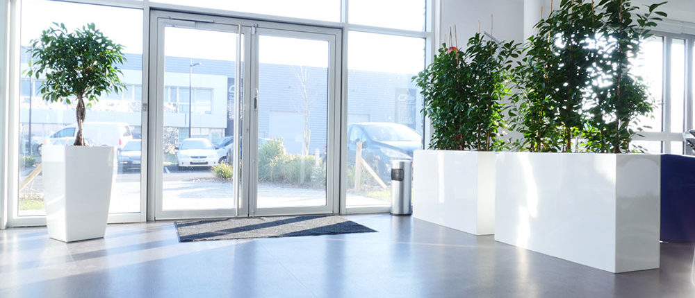 Agencer votre hall d'entrée par la location de plantes sur Lille