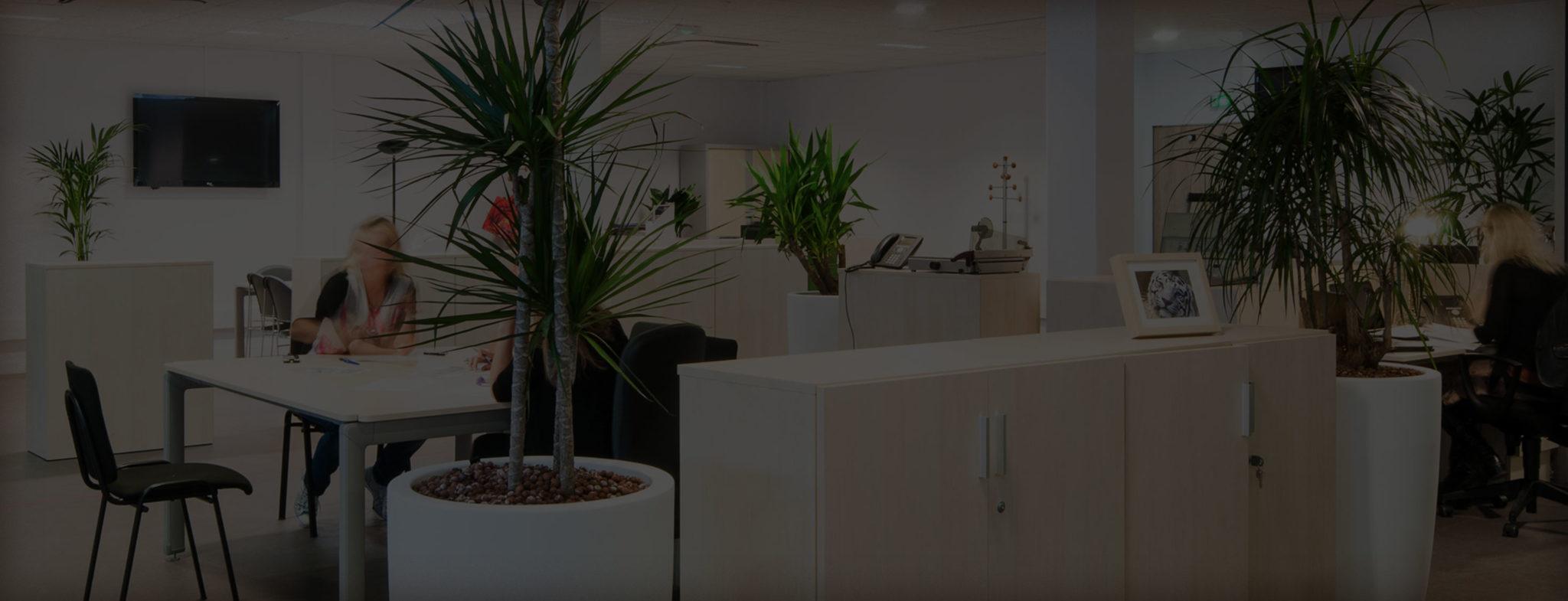 Bureaux et salles de réunion