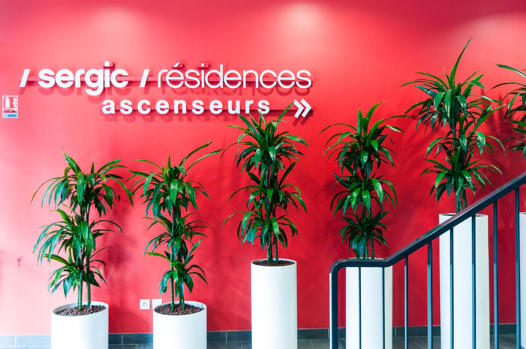 Plantes accueil pour votre établissement professionnel