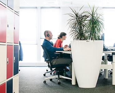 Louer vos plantes pour agencer vos bureaux avec une touche de nature - Booking