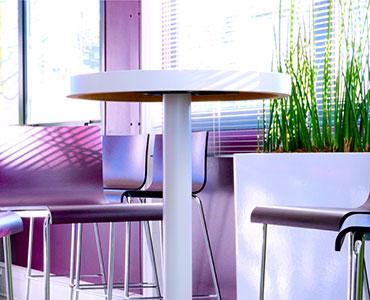 Agencement mobilier et plantes pour la société Diagast