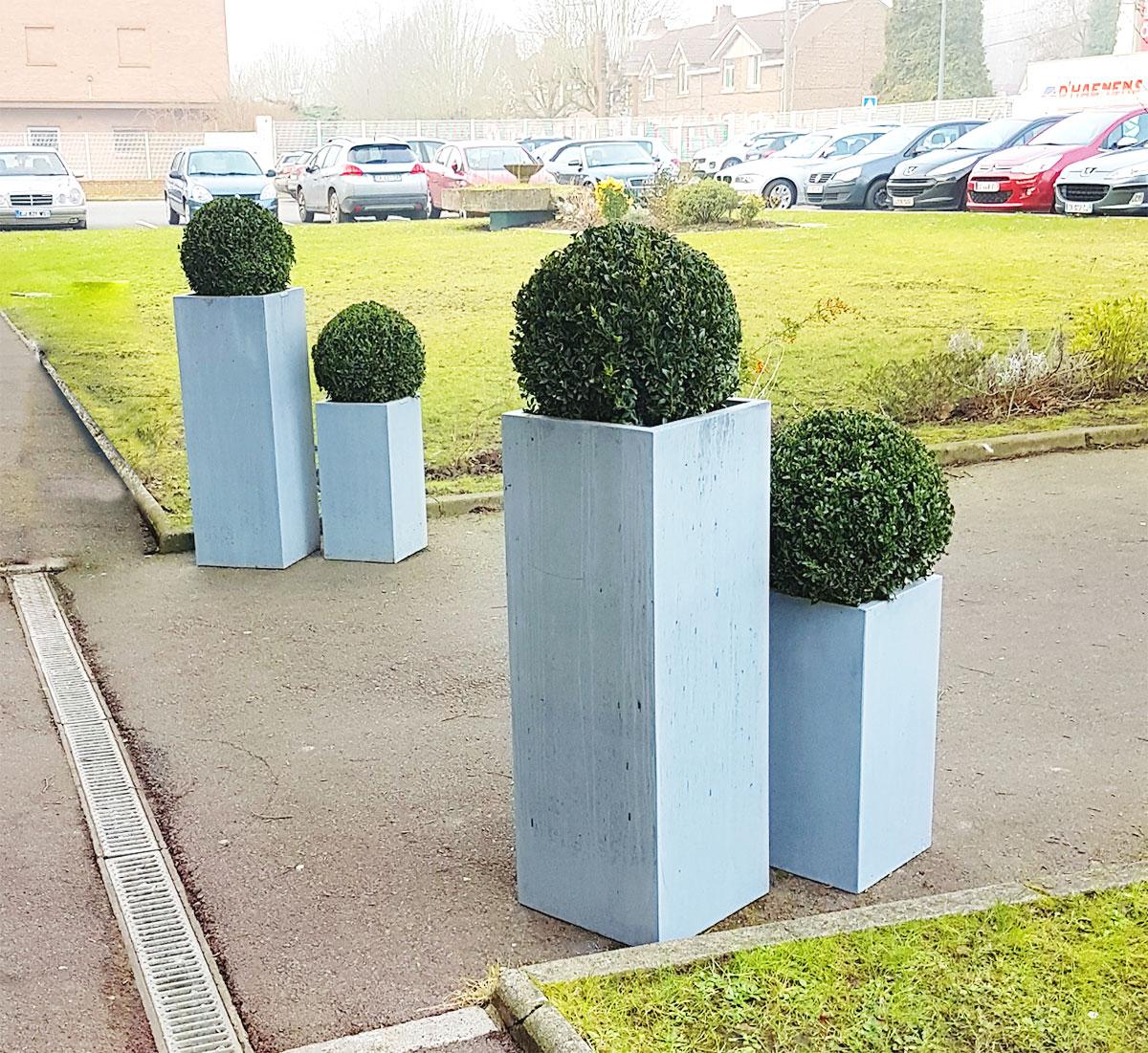 Ambiance végétale extérieure - De Jolies plantes pour rendre accueillante l'entrée du Bâtiment - KSB Sequedin