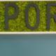 Mur Végétal avec mousse stabilisée
