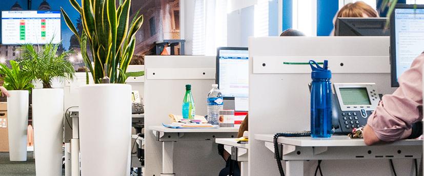 Espace de travail et location de plantes