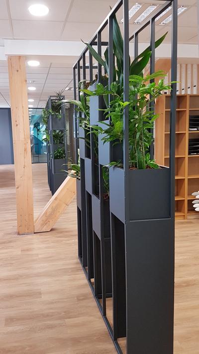 Cloison végétale pour séparer vos espaces de travail