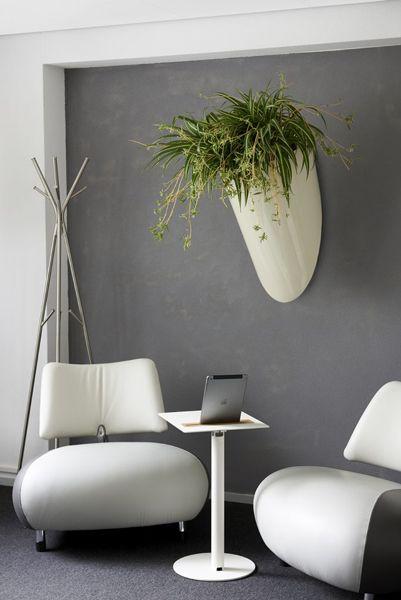 Pot mural pour votre salle d'attente