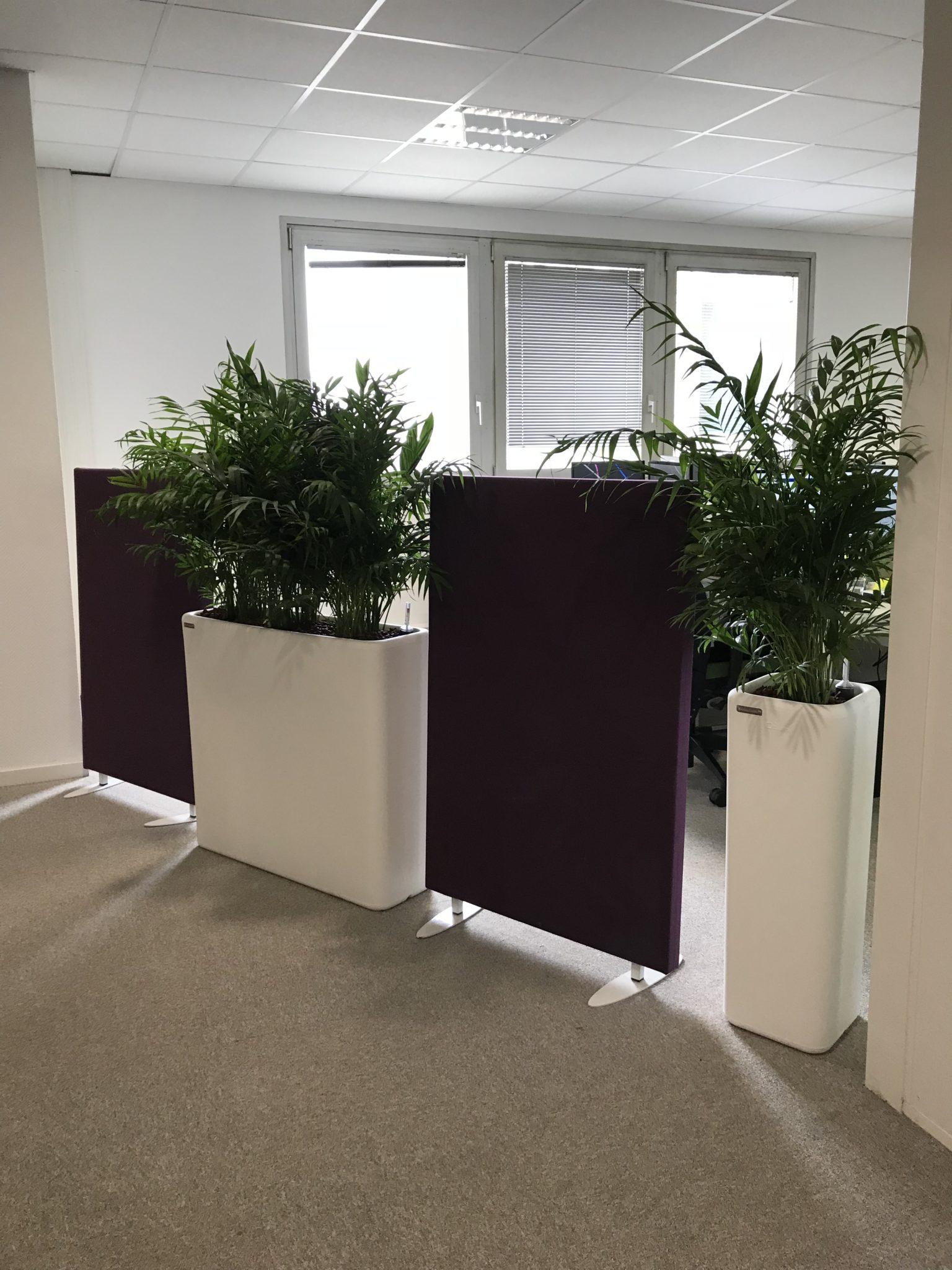 Location de plantes et pots sur-mesure