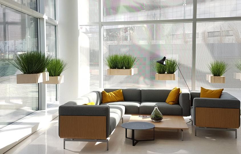 Aménagement de vos bureaux par location plante architecte Paris
