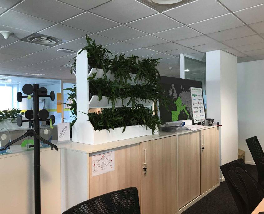 Végétalisez vos espaces de travail