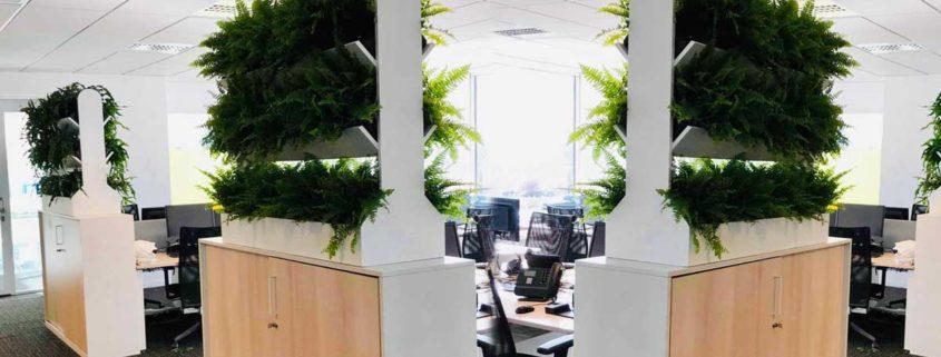 Cloison végétale sur mesure pour vos bureaux