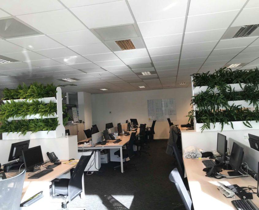 cloison végétale pour vos bureaux