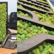 Ecran en mousse végétale pour créer une distanciation en entreprise