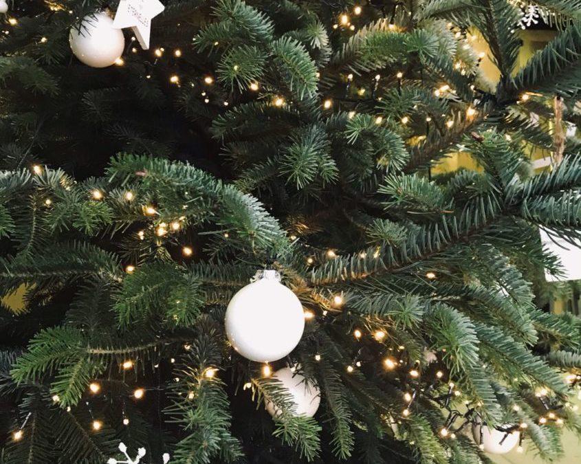 Livraison de sapins de Noël décorés pour votre société