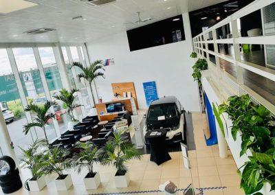 Location de plantes vertes pour un concessionnaire automobile sur Lille