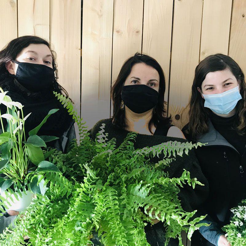Contactez notre équipe nature végétale