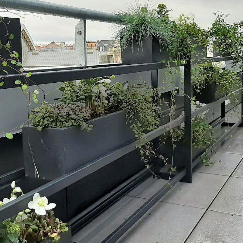 location plantes étagère sur mesure